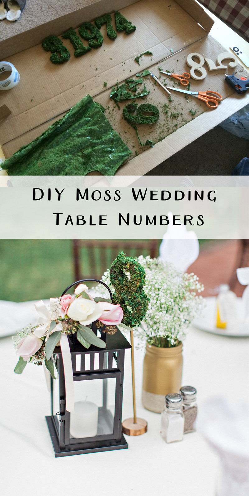 Diy Moss Table Numbers Sm